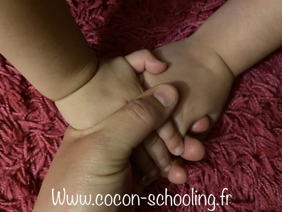 Cocon Schooling
