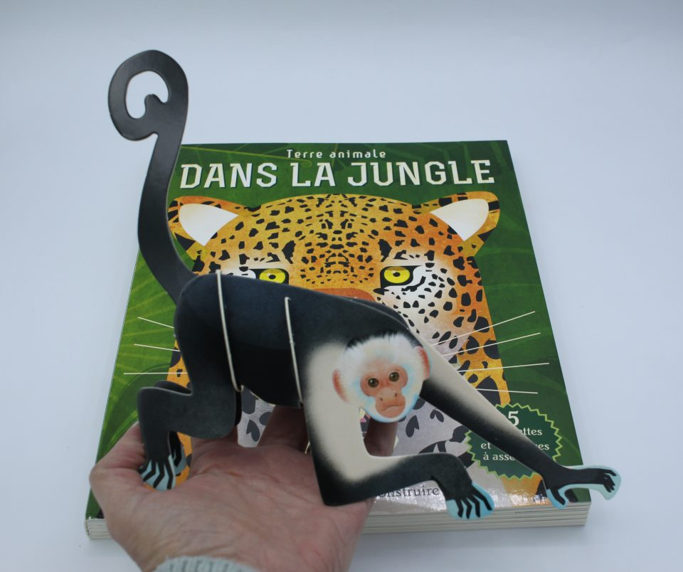 Terre animal - Dans la jungle
