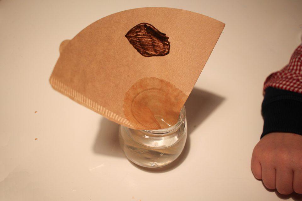 expérience filtres à café