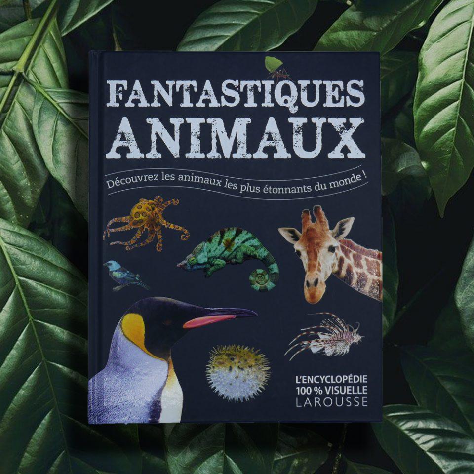 Fantastiques Animaux - L'Encyclopédie 100% visuelle